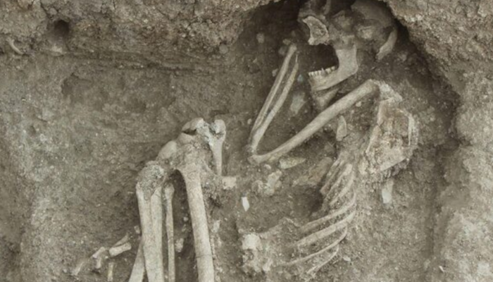 Bilecik'te 8 bin 500 yıllık olduğu değerlendirilen insan iskeleti bulundu