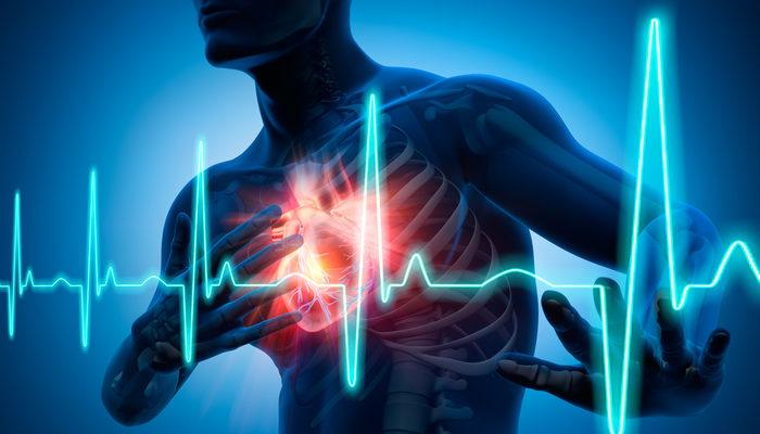 Laboratuvar ortamında canlı insan kalbi geliştirildi