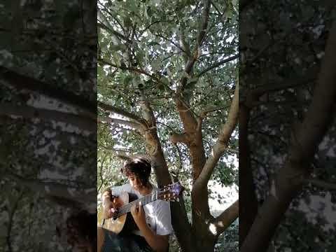 "Suyla Polat plays ""Lullaby for Maya"" by Melih Güzel"
